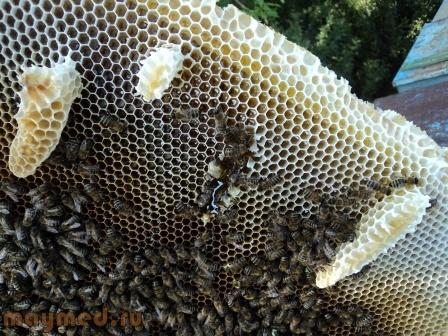 43 Мёд