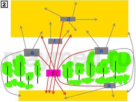 схема нахождения пасеки {amp}quot;на перелёте{amp}quot;